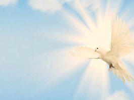 Coroncina allo Spirito Santo